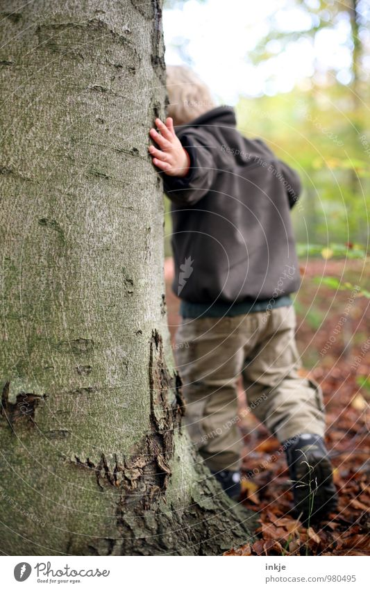 Human being Nature Tree Winter Forest Life Boy (child) Natural Playing Going Leisure and hobbies Infancy Touch Curiosity Tree trunk Education