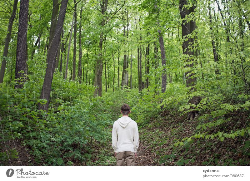 Human being Nature Youth (Young adults) Tree Relaxation Landscape Calm Young man 18 - 30 years Forest Environment Adults Life Lanes & trails Spring Freedom