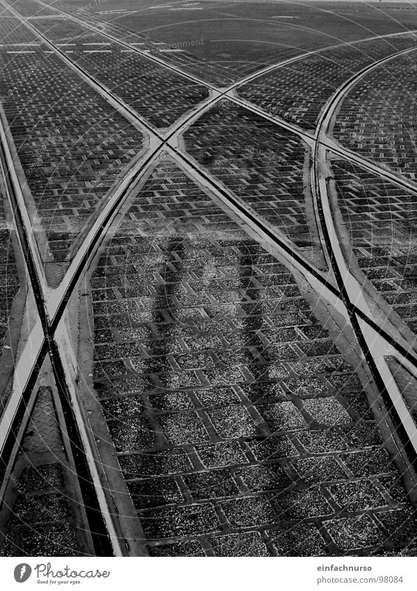 all paths lead to... Exterior shot Lanes & trails Railroad tracks Cross Traffic infrastructure Black & white photo Transport railway tracks Branched Mixture