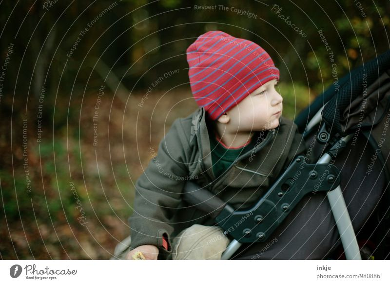 Human being Child Nature Winter Forest Life Autumn Emotions Boy (child) Park Lifestyle Leisure and hobbies Sit Infancy Trip Observe