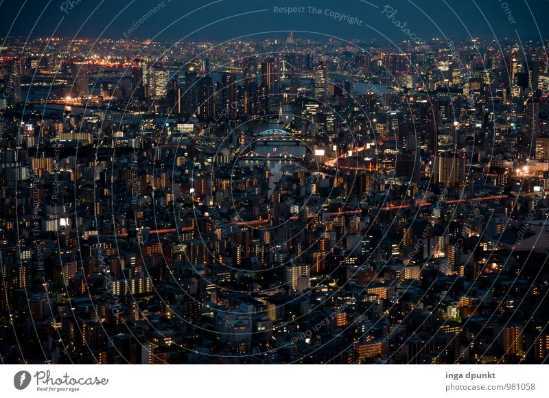Tokyo II Technology High-tech Japan Asia Town Lure of the big city Honshu Transport Traffic infrastructure Street Lanes & trails Road junction Tourism Large