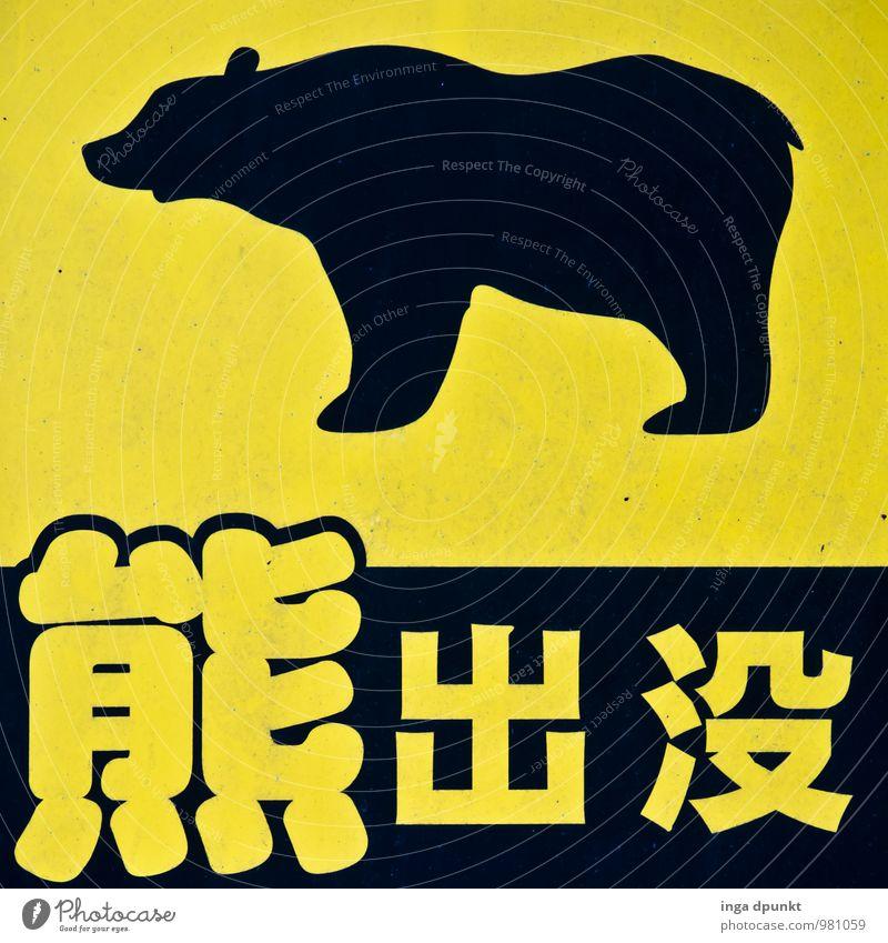 Nature Animal Black Yellow Lanes & trails Metal Wild animal Tourism Hiking Signage Letters (alphabet) Symbols and metaphors Asia Japan Clue Bear