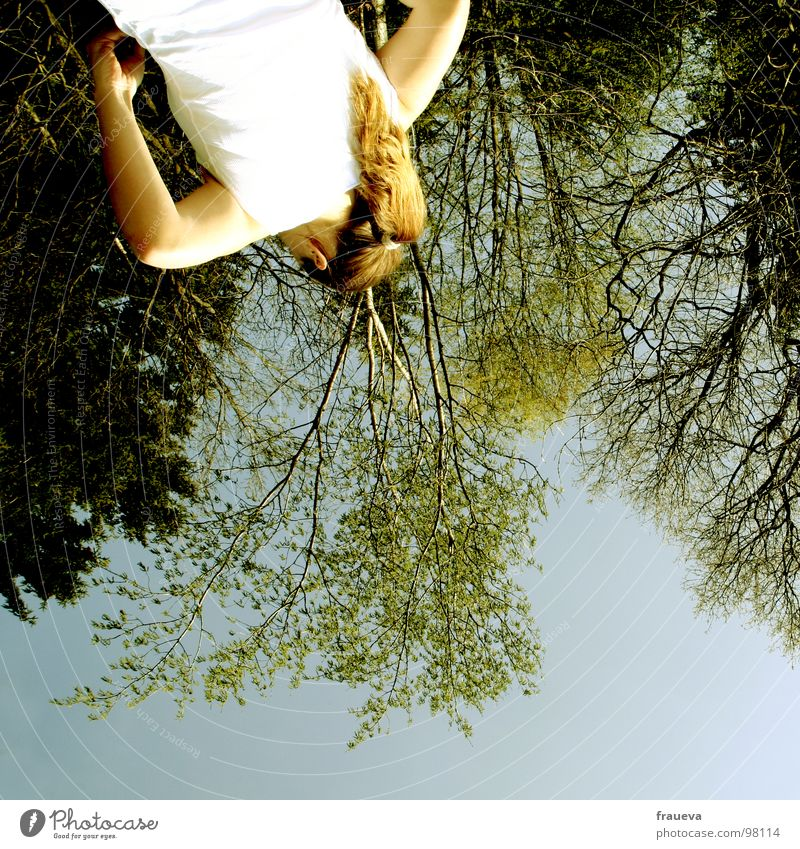 inverted world Forest Tree Wood flour Woman Feminine Worm's-eye view Opposite Inverted Green Contentment T-shirt Colour Summer Rotate world view Blue Sky Nature