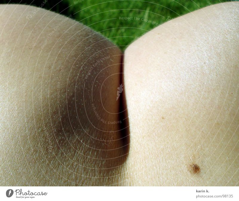 Nude photography Skin Bottom Shoulder Section of image Partially visible Mole Headless Naked flesh