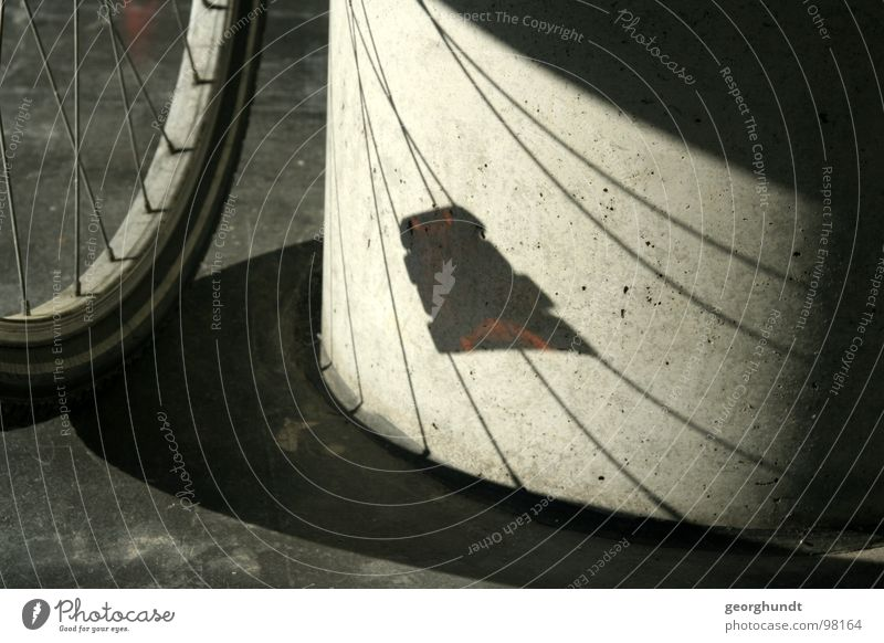 memorable Bicycle Hallway Black White Wheel rim Reflector Coat Hose Shadow Detail drade Column Black & white photo Spokes