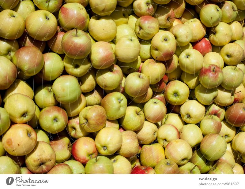 apple harvest Environment Nature Summer Shopping Healthy Glittering Natural Juicy Sweet Multicoloured Yellow Gold Green Colour Ease Arrangement Transience Apple