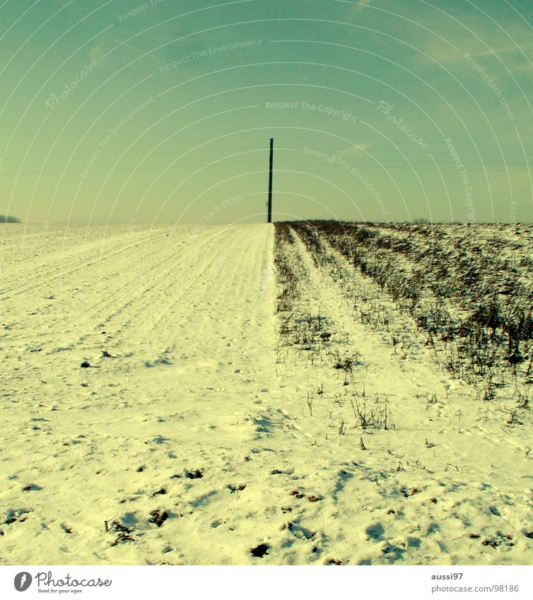 Winter Cold Snow Landscape Ice Field Electricity Technology Agriculture Electricity pylon High voltage power line Sparse Comfortless Electrical equipment