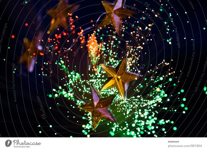 star cluster Feasts & Celebrations Christmas & Advent Christmas decoration Christmas figure Christmas fairy lights Sign Star (Symbol) Glittering Colour photo