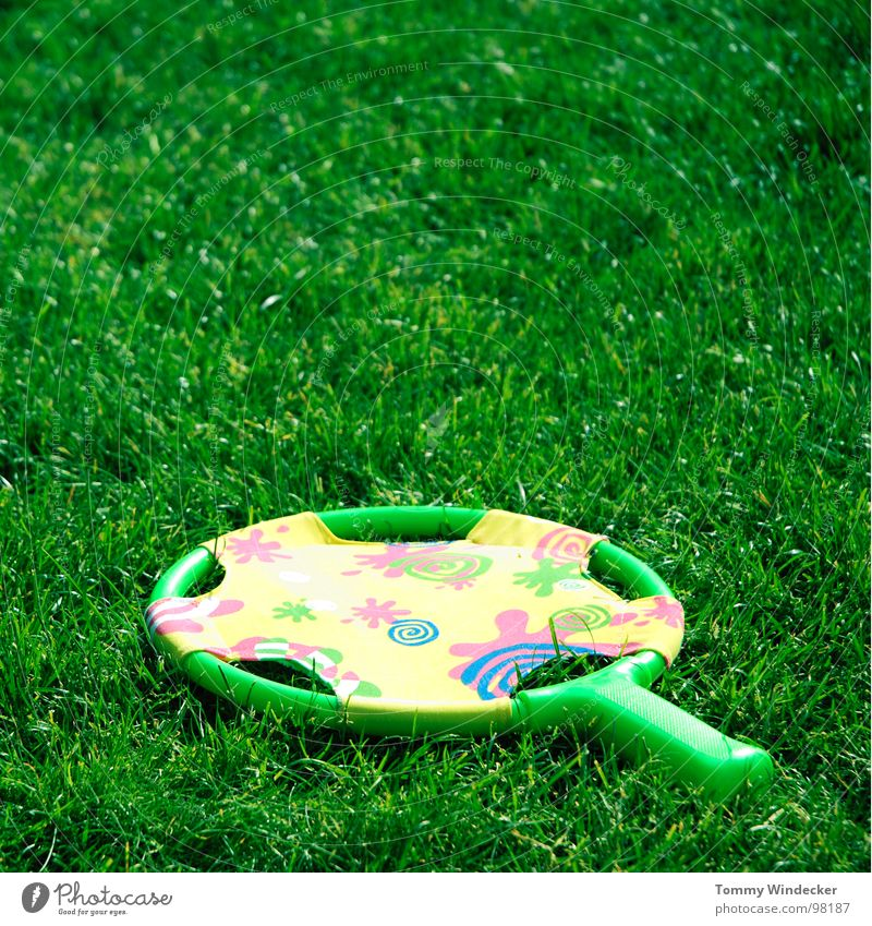 Green Summer Joy Meadow Playing Grass Leisure and hobbies Lawn Plastic Toys Statue Blade of grass Doomed Tennis Rubber Romp