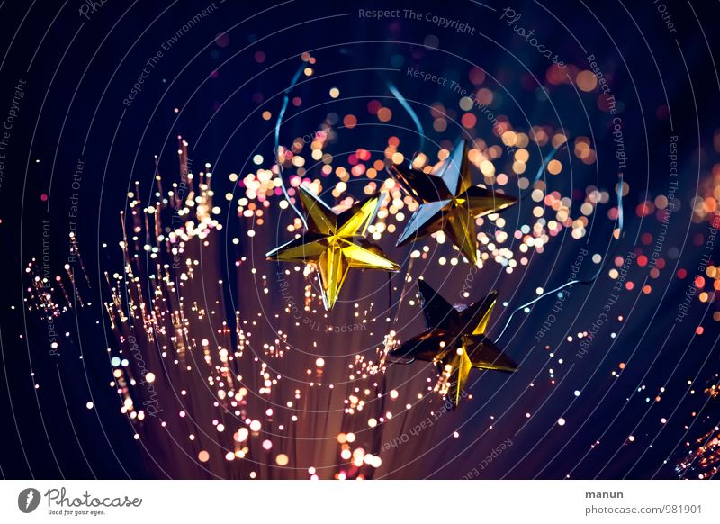 Christmas & Advent Feasts & Celebrations Happiness Star (Symbol) Anticipation Christmas decoration Starry sky Christmas fairy lights Constellation