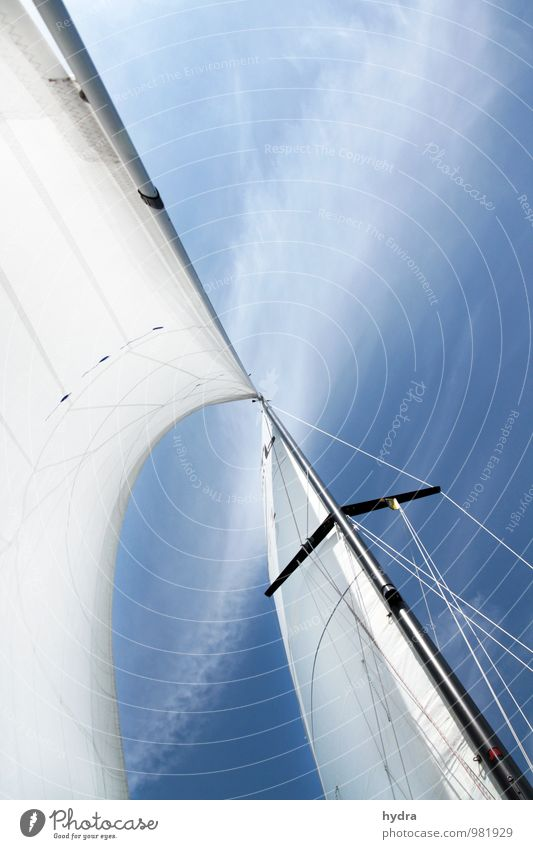 Sails | Northwest to Southeast Vacation & Travel Freedom Aquatics Sailing Sailing trip Mast Air Sky Clouds Summer Beautiful weather Wind Sport boats Yacht