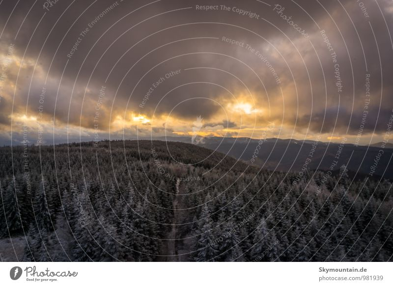 Sunset over Black Forest 1 Happy Vacation & Travel Tourism Trip Adventure Far-off places Freedom Expedition Winter Snow Winter vacation Mountain Hiking