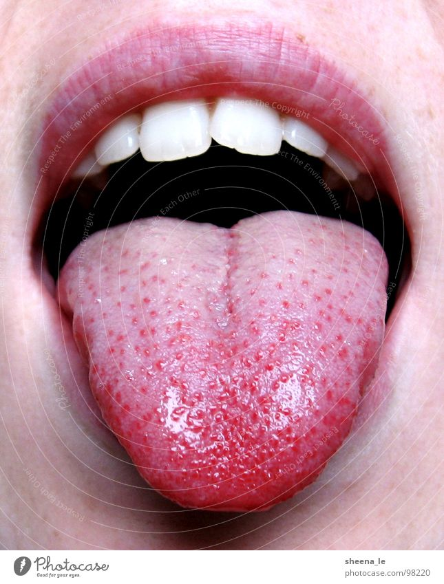 Tongue out Joy Mouth Lips Teeth To enjoy Kissing Brash Funny Pink Red Appetite youthful Stick out Bah Face Skin Close-up Macro (Extreme close-up)