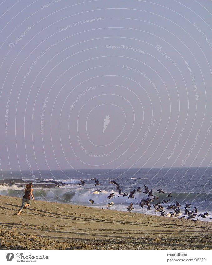 shoo, shoo Ocean Seagull Woman Beach Coast Walking Freedom Flying Water