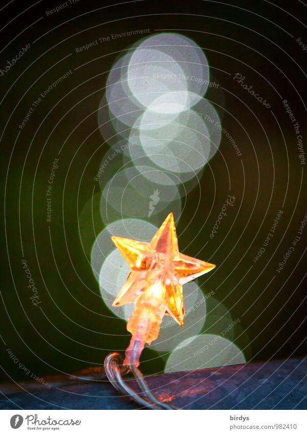 Christmas & Advent Moody Glittering Illuminate Esthetic Star (Symbol) Positive Christmas decoration Electric Fairy lights Christmas star Christmas fairy lights