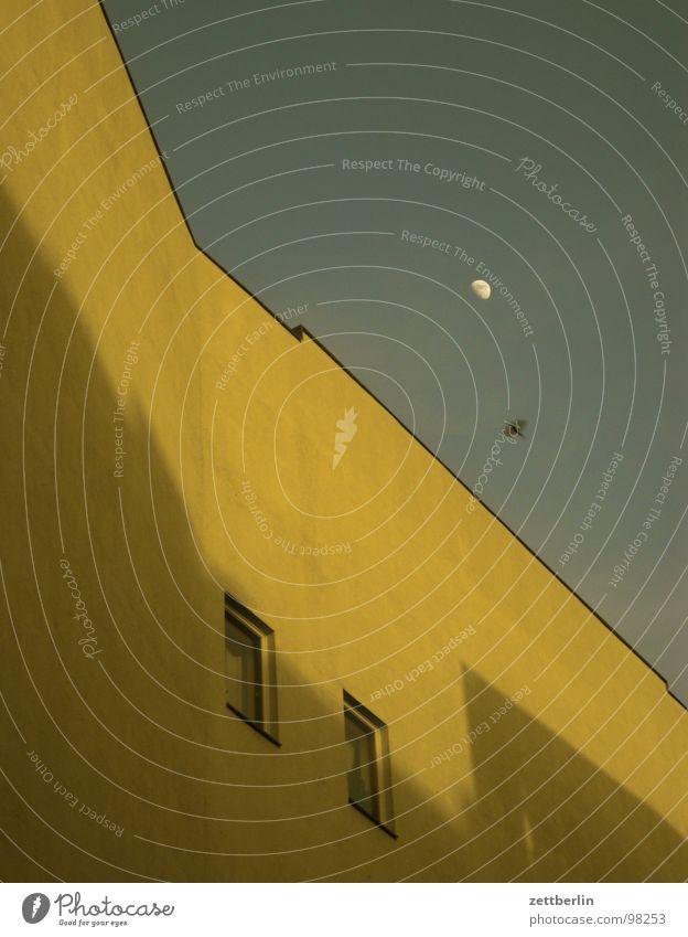 Sky House (Residential Structure) Window Bird Flying Facade Moon Pigeon Tenant Departure Landlord Crow Swallow Fire wall Blackbird Half moon