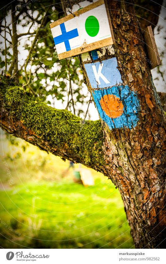 hiking signpost Life Leisure and hobbies Vacation & Travel Tourism Trip Adventure Freedom Expedition Hiking Environment Landscape Summer Tree Grass Meadow Field