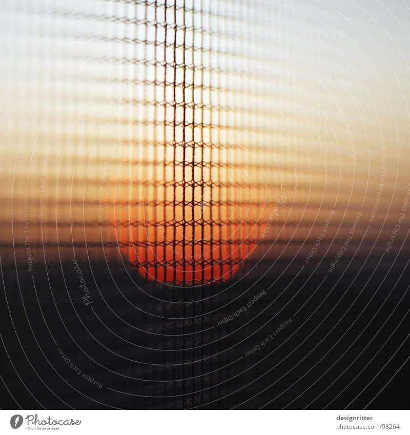 Gauze in the evening 2 Fly screen Grating Safety Wall (building) Transparent Sunset Flying Protection Divide Sewing thread Sky Evening Exterior shot