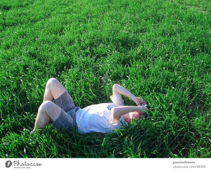 Hear the grass grow Colossus Grass Meadow Summer Relaxation Calm Take a photo Beautiful weather Joy John Lie bed in cornfield