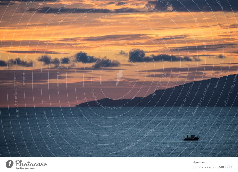 reverie Fishery Landscape Elements Air Water Sky Clouds Sunrise Sunset Mountain Ocean Mediterranean sea Island Ischia Fishing boat Motorboat Work and employment