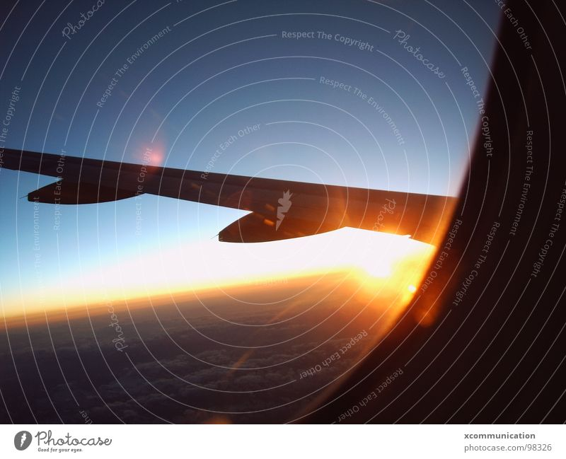 sunrise on plane Horizon Sky Sunrise Blue sky Covers (Construction) Airplane Joy Celestial bodies and the universe Wing bull eye aircraft