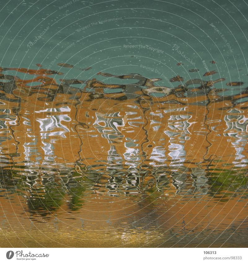 Sky Nature Blue Water Green Tree Red Colour House (Residential Structure) Environment Far-off places Window Meadow Playing Architecture Coast