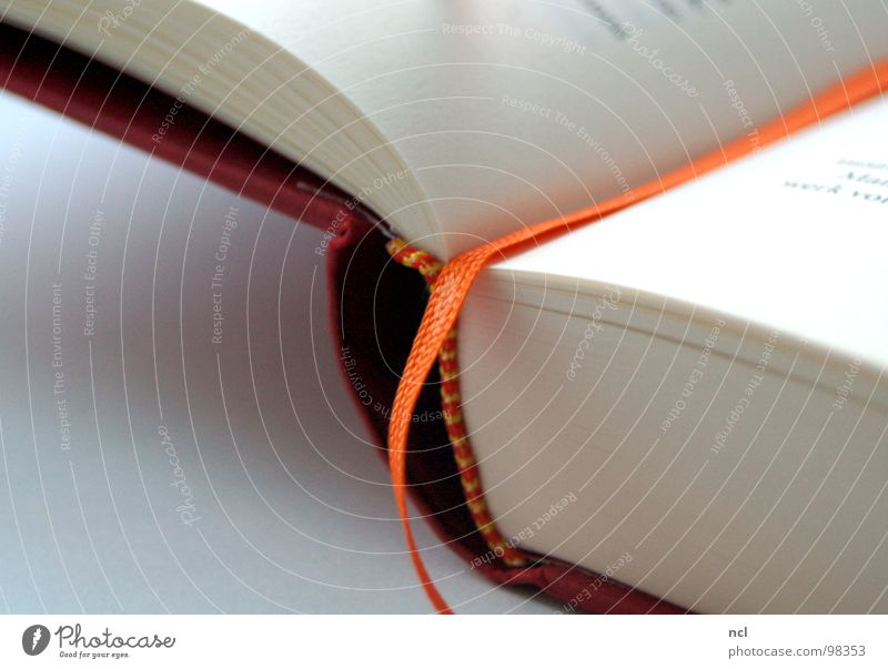 White Red Orange Art Book Paper Culture Education Connection Past Side Piece of paper Thought Sewing thread Memory Text