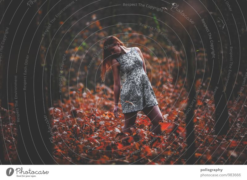 Human being Woman Nature Youth (Young adults) Plant Beautiful Tree Young woman Leaf Landscape 18 - 30 years Forest Adults Life Autumn Emotions