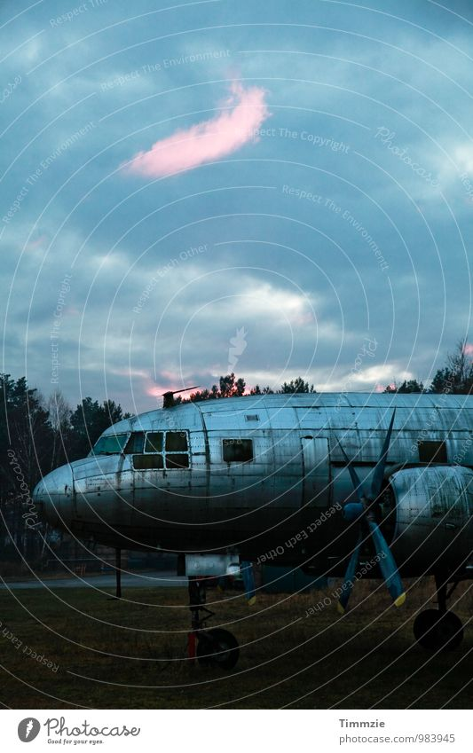 Old Blue Dirty Airplane Transience Broken Past Decline Sculpture Endurance Unwavering Airfield Propeller aircraft