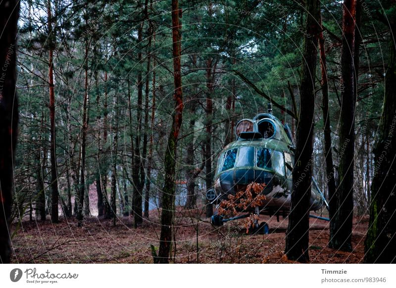 lost in the woods Aviation Art Exhibition Forest Helicopter Aircraft Decline Past Transience Mi-8 NVA lost place Exterior shot