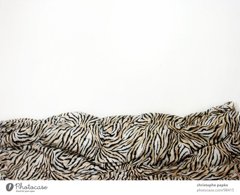 Wall (building) Bed Retro Kitsch Wrinkles Bedclothes Striped Cuddly Duvet Untidy Cheap Folds The eighties Tiger skin pattern Tasteless Bright background