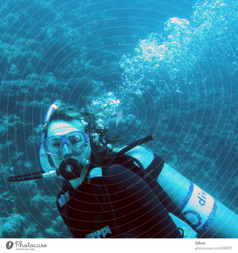 Diver with Bubbles Ocean Lake Snorkeling Air Oxygen Coral Aquatics Water divergent bubbles sea blue underwater snorkel Tank wetsuit mask regulator o2 fish
