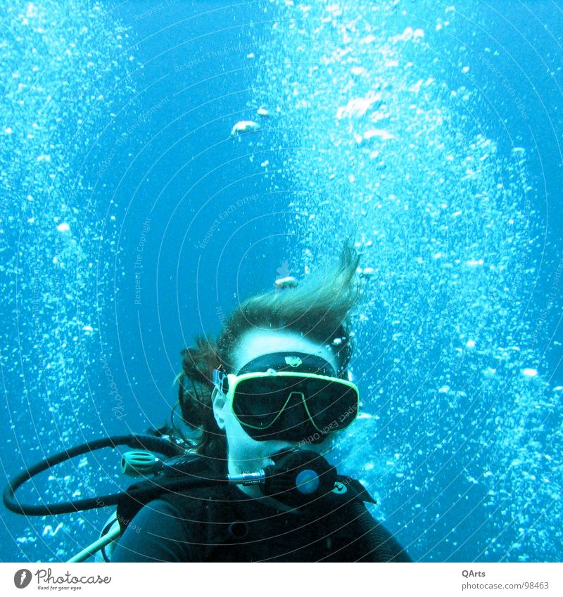 Diver with Bubbles II Ocean Lake Snorkeling Air Oxygen Coral Aquatics Sports Playing divergent bubbles water sea blue underwater snorkel Tank wetsuit mask