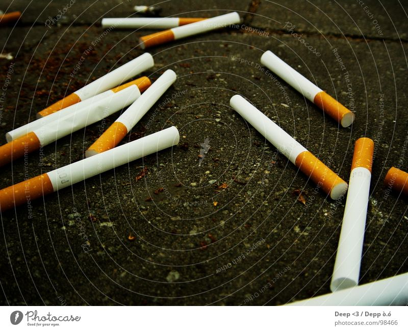 Empty addiction ? Cigarette Husk Tobacco Intoxicant Dependence Black White Gray Brown Useless Transience Floor covering Filter Search
