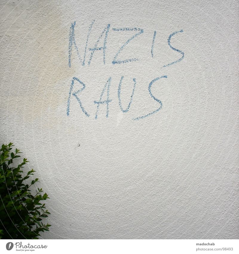 FORM FOLLOWS FUNCTION Word Fascist Anti-fascism Vandalism Daub Letters (alphabet) Figure of speech Slogan Politics and state Left Illegal Bushes Wall (building)