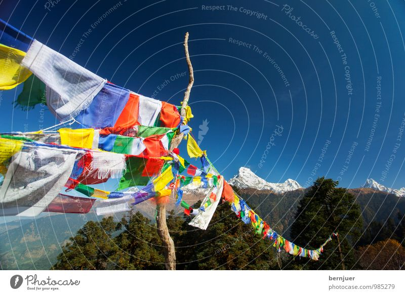 may the wind horse Nature Landscape Cloudless sky Peak Snowcapped peak Esthetic Blue Unwavering Interest Himalayas Flag Flagpole Prayer flags Annapurna Mountain
