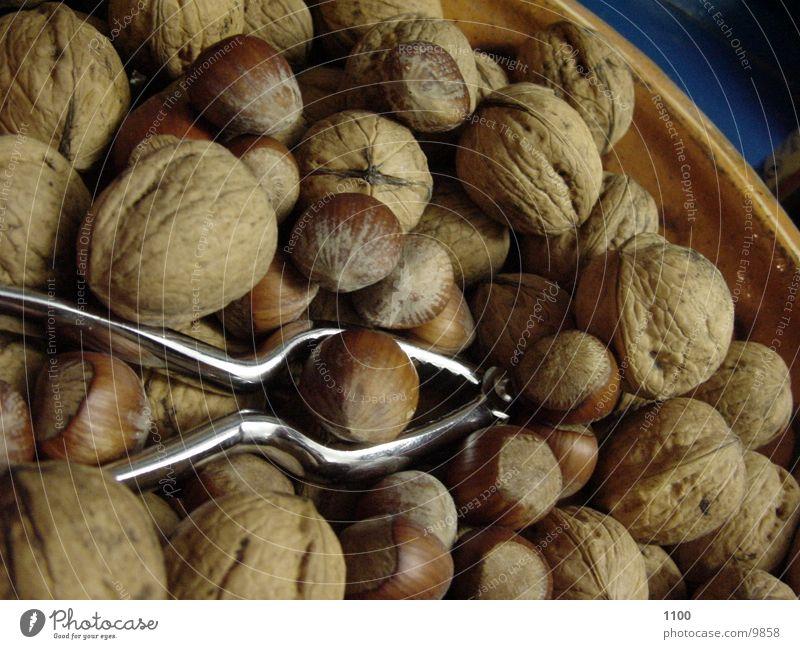 nuts+crackers Nut Nutcrackers Healthy