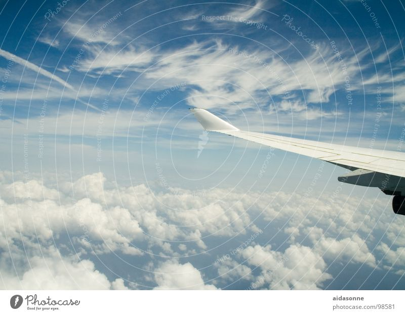 Sky White Blue Summer Clouds Above Airplane Aviation Departure