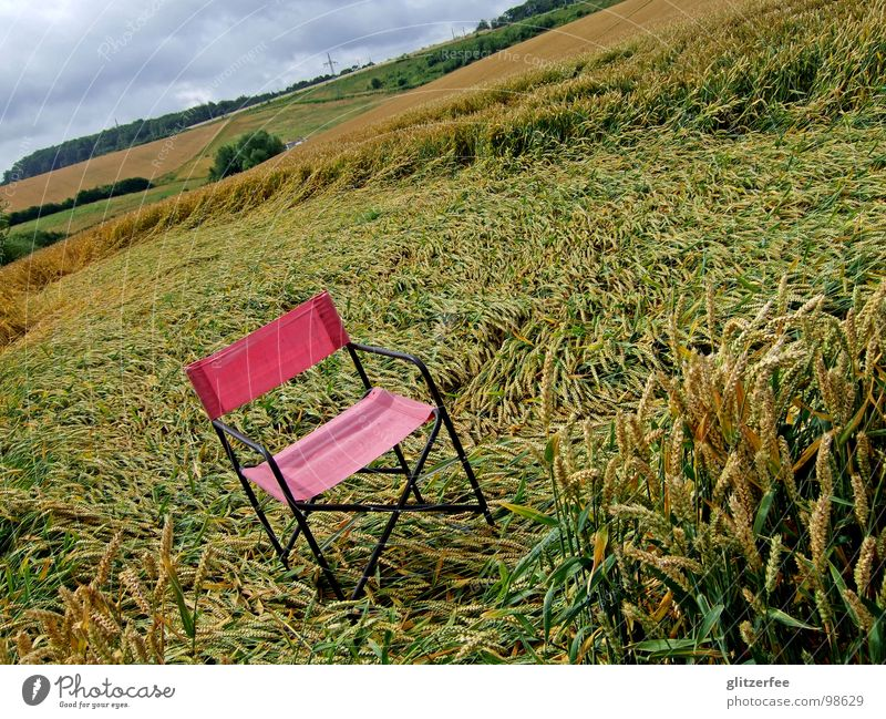 Nature Red Summer Clouds Calm Rain Chair Gale Thunder and lightning Pallid Wheat Fairy UFO Extraterrestrial Barley Rye