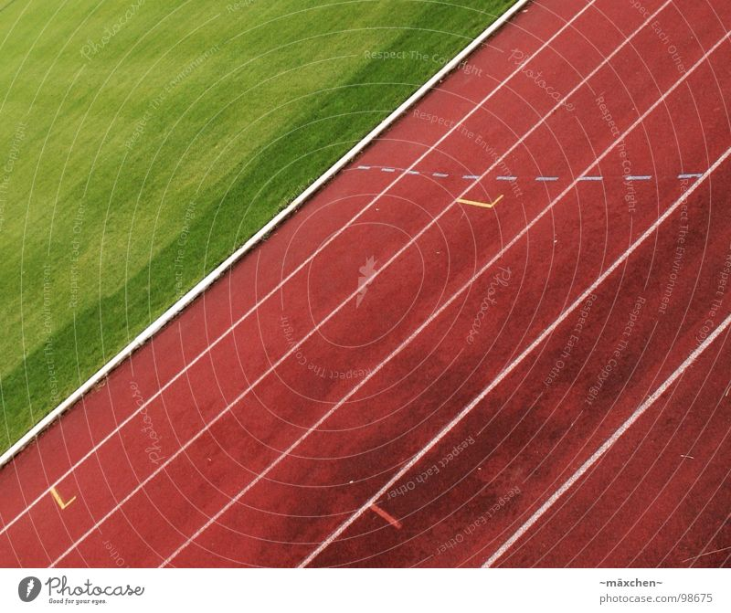 Loooos! Racecourse Stadium Track and Field Red Green White Tracks Tilt Hundred-metre sprint Jogging Endurance Thrashing Bonus Sports Playing go Walking run Line