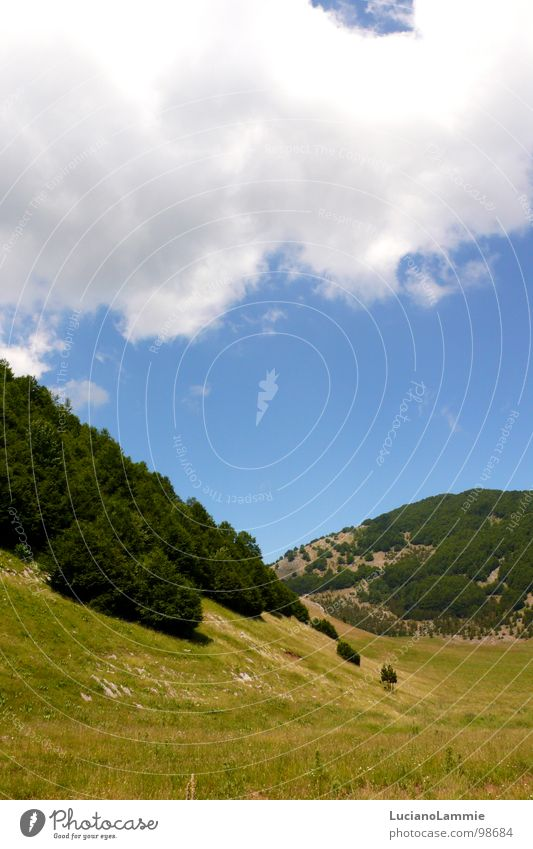 Pollino Basilicata Sky Nature Italy South Italy pollino mountain Lucania cloud tree sun white and blu