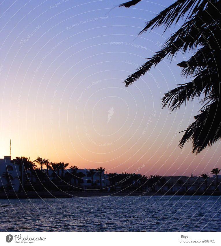 Water Sky Sun Ocean Blue Beach House (Residential Structure) Coast Africa Bay Palm tree