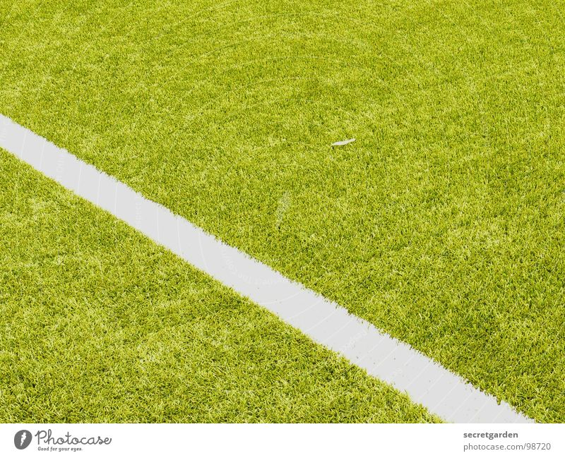 from left middle to right down Playing field Artificial lawn Fringe zone Section of image Sporting grounds Edge Deserted White Green Sports Soccer