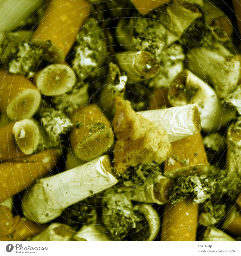 Dirty Blaze Dangerous Fire Threat Smoking Gastronomy Smoke Rotate Cigarette Cuba Odor Match Disgust Hideous Unhealthy