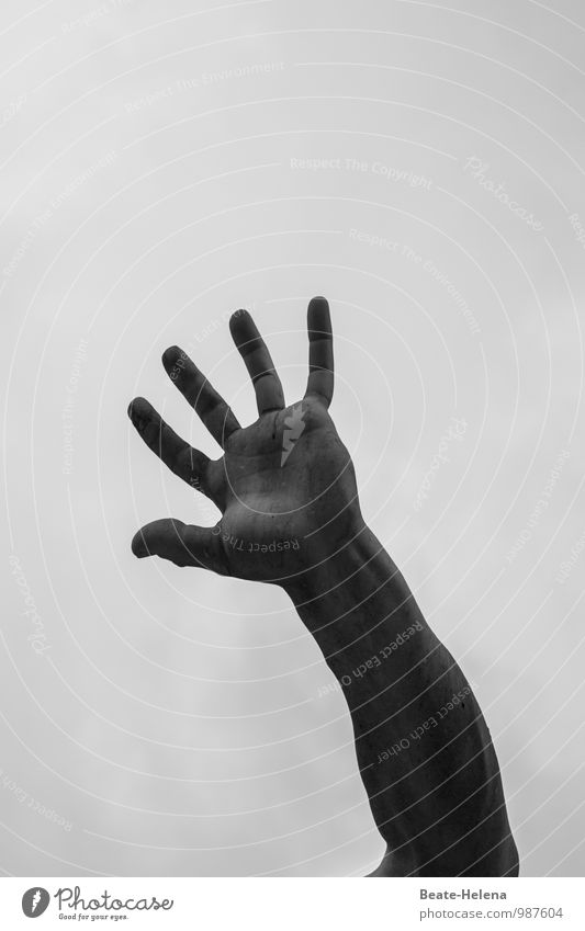 Sky Hand Dark Sadness Movement Exceptional Fear Authentic Arm Poverty Threat Fingers Sign Target Anger End