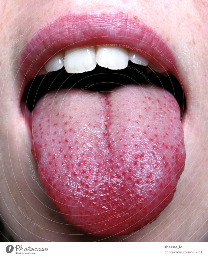tongue Joy Mouth Lips Teeth Brash Funny Pink Red Tongue youthful Stick out Bah Face Skin Close-up Macro (Extreme close-up)