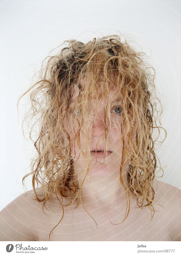 freshly showered Style Hair and hairstyles Face Human being Woman Adults Blonde Curl Comb Fresh Wild Curly faces curls crinkles Hairdressing Wash washing fuzzy
