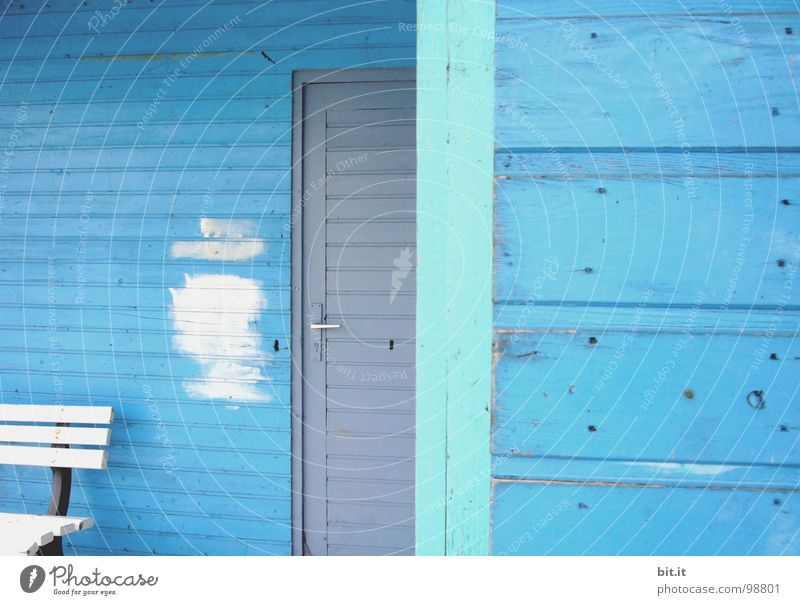BLUE, BLUE, BLUE is all I have Wooden house Wooden hut Light blue White Wooden bench Patch of colour Redecorate Redevelop Paintwork Blue wood Scandinavia