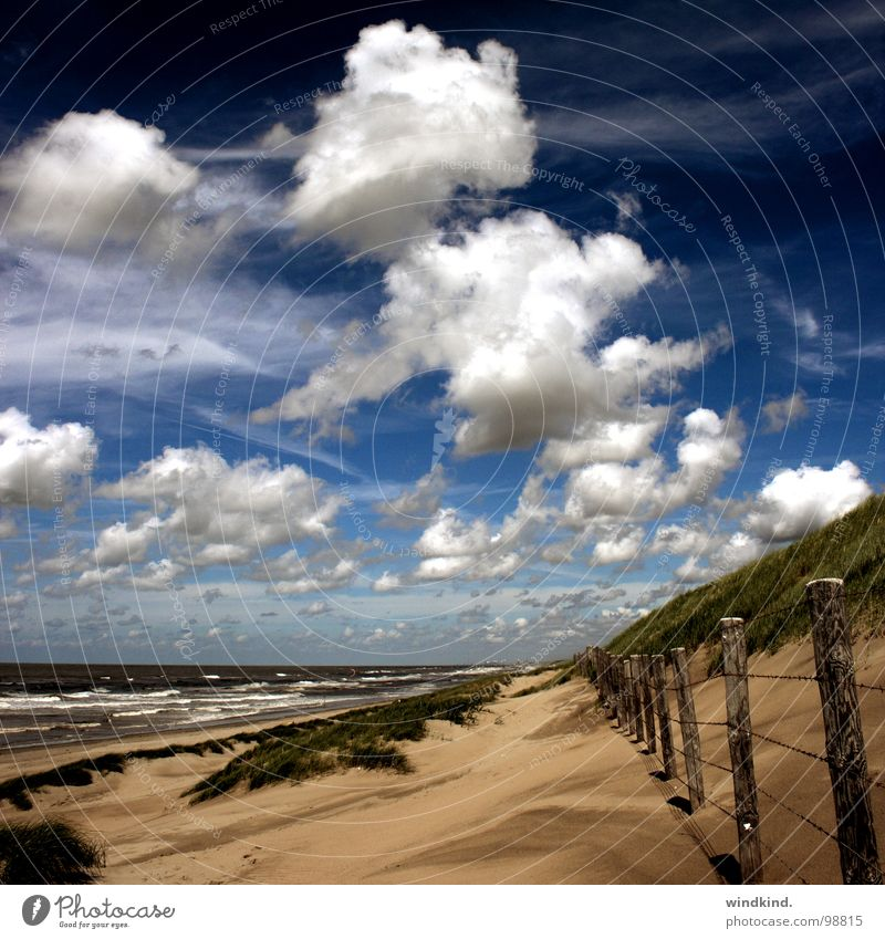 we are nowhere and it is now Ocean Cold Beach Clouds White Gray Fence Breeze Lake Sun Physics Summer Fresh Sky Blue Wind Sand Beach dune Weather Wild animal