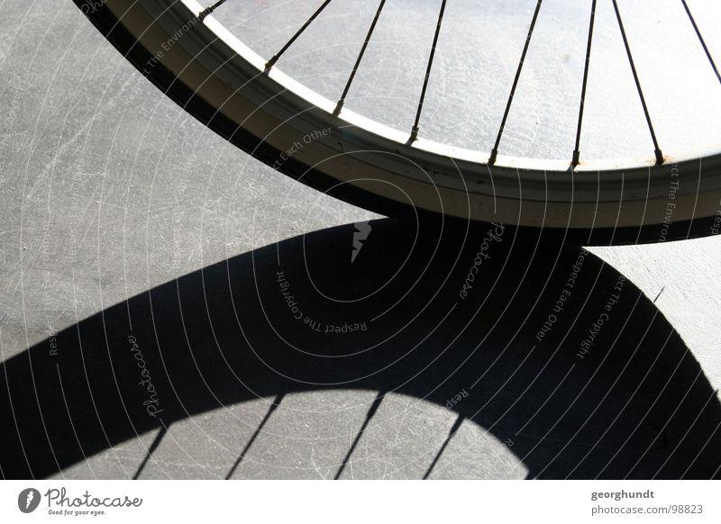 memorios II Bicycle Hallway Black White Wheel rim Reflector Coat Hose Shadow Shadow play Playing Orientation Disorientated Reflection Train station drade Column